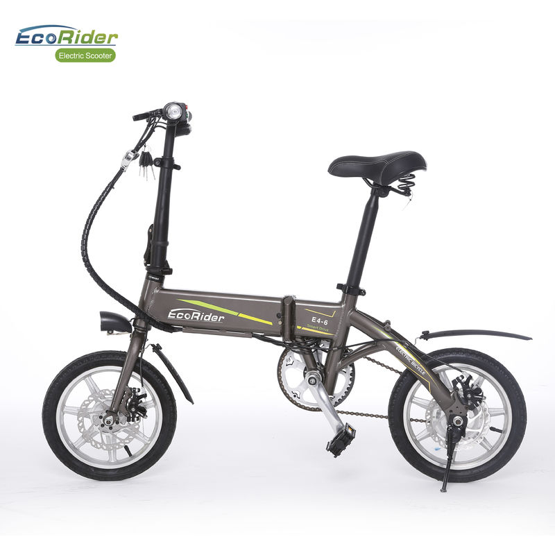 Smart Foldable Electric Biker 2 Wheel Electric Bike With Removeable Lithium Battery